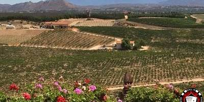 History of Temecula Valley Wine Country